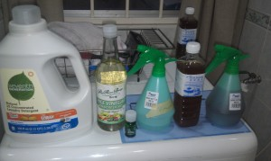 Hypoallergenic Home Cleaning Supplies